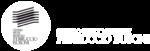 logo_busoni_web